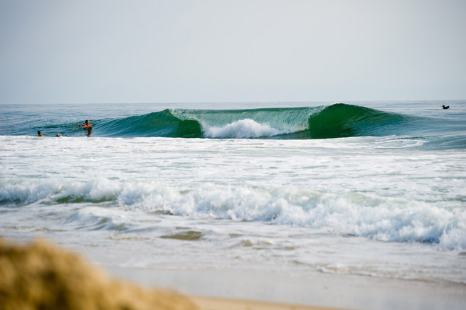 gromsearch-nc06
