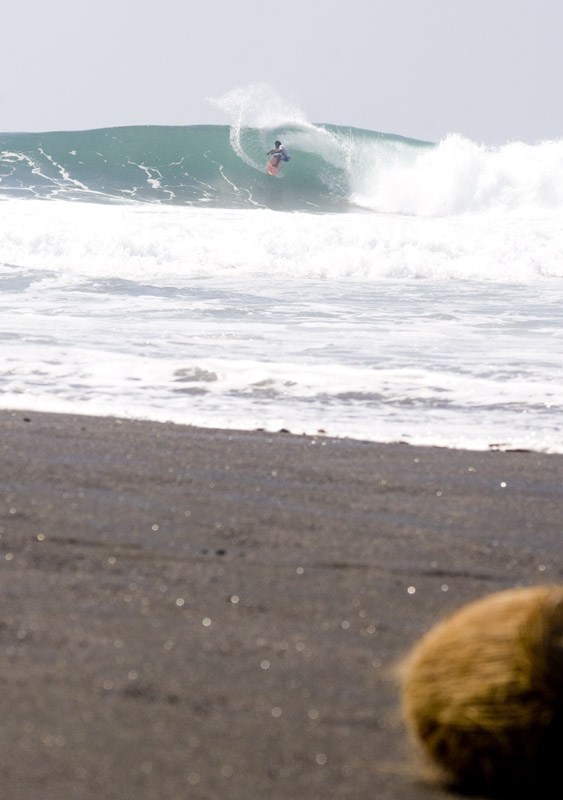 Semi-finalist Pepin Hendrick and anonymous coconut. PHOTO: Myers.