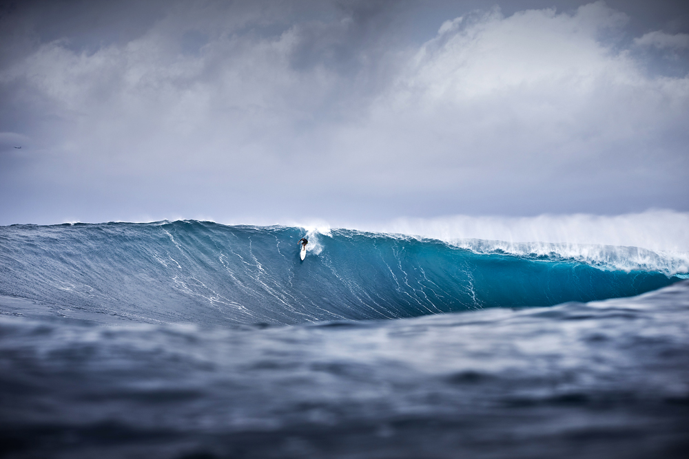Nic Vaughn, Jaws. Photo: Brent Bielmann